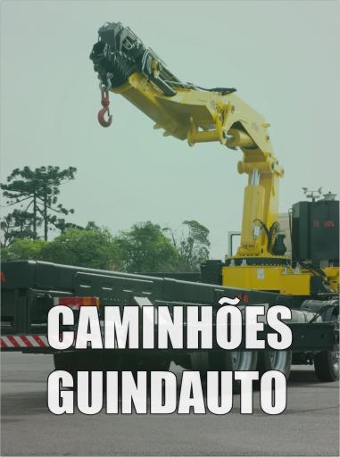 caminhoes-guindauto1